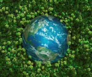Giornata mondiale dell'ambiente. Un futuro green è possibile